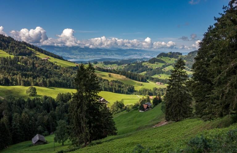 Zürich Mehr Tierschutz für Wildtiere