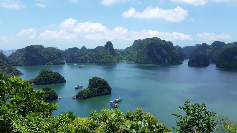 Vietnam verbietet Jagd und Handel mit Wildtieren
