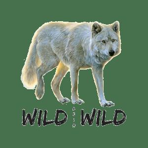 Wildtiere Jagd Jäger Tierschutz Schweiz Tierrechte
