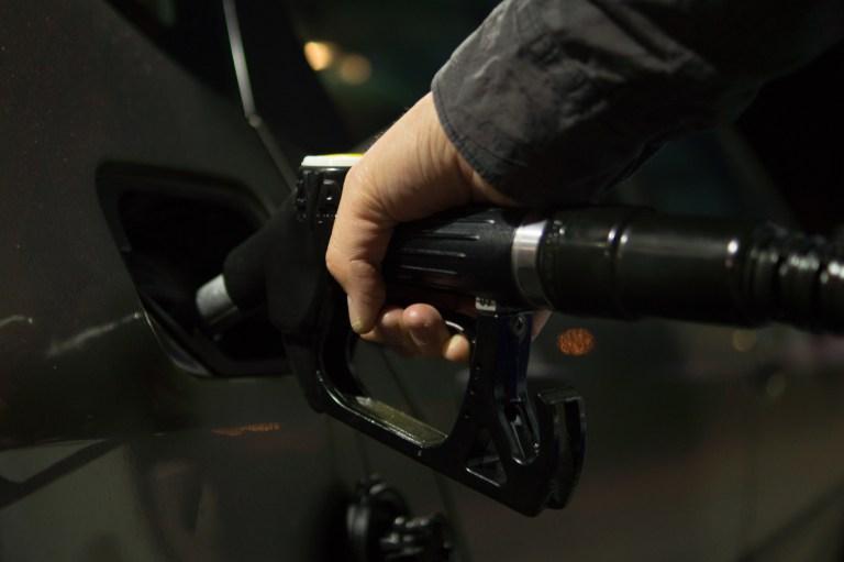 Landen Corona-verseuchte Nerzkadaver im Biodiesel