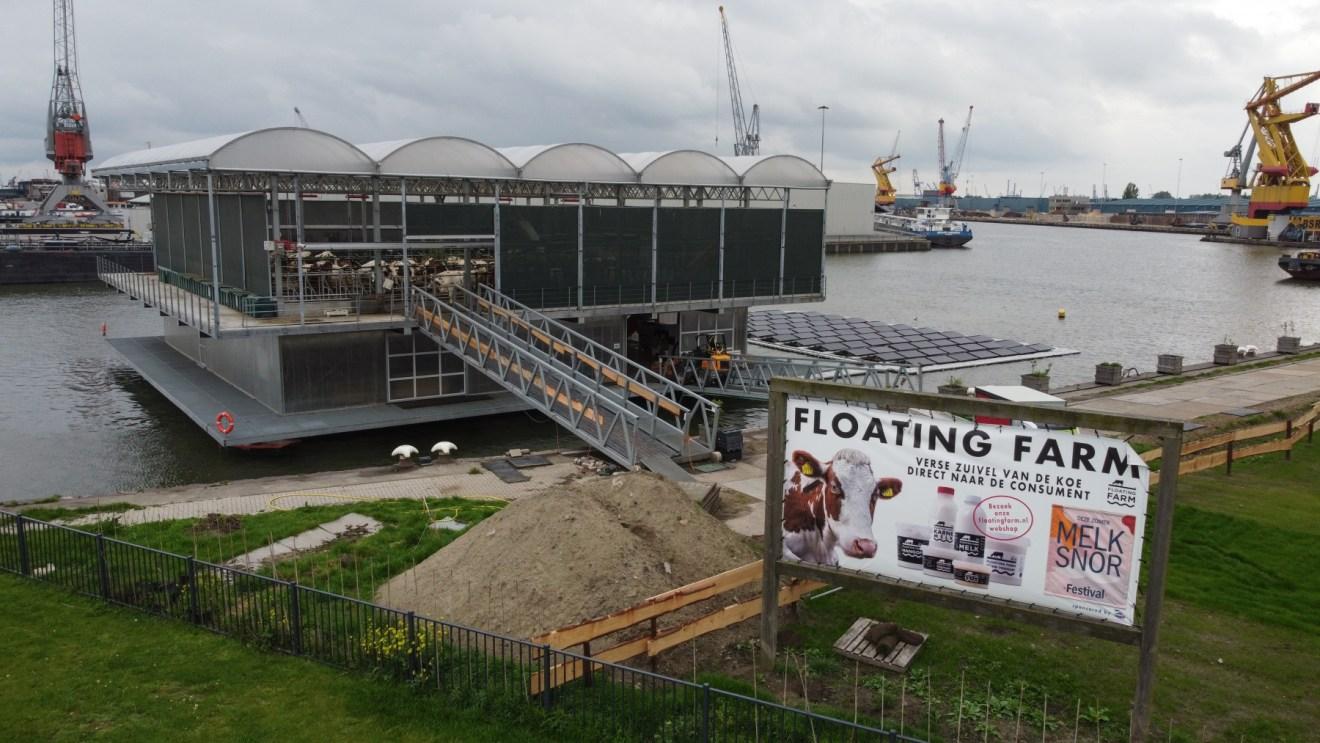 Schwimmender Kuhstall in Rotterdam
