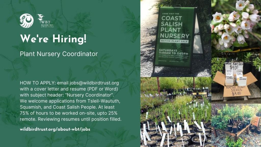Twitter poster for Plant Nursery Coordinator job posting