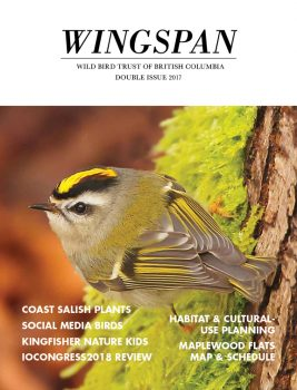 Wingspan_DoubleIssue 2017_Cover