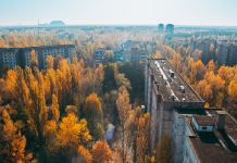 Chernobyl Rewilding Reserve