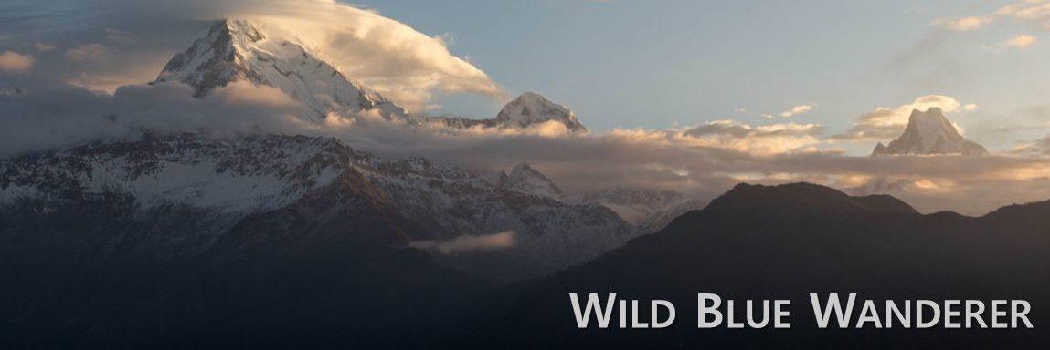 Wild Blue Wanderer
