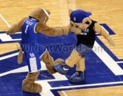 Kentucky Mascots - photo by Walter Cornett | WildcatWorld.com