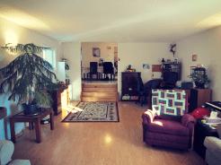 Living room - looking back!