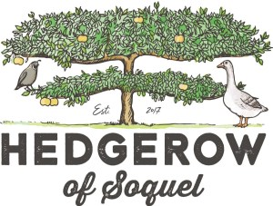 HEDGEROW of Soquel