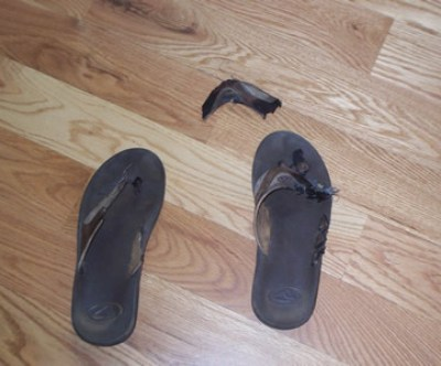 Another Shoe Fatality