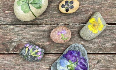 happy stones maken met gedroogde bloemen stenen versieren
