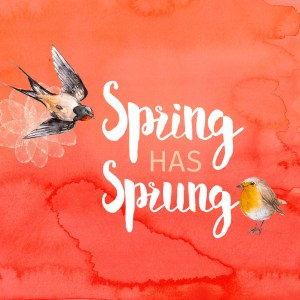 Spring Has Sprung Wallpaper by Wilde Designs