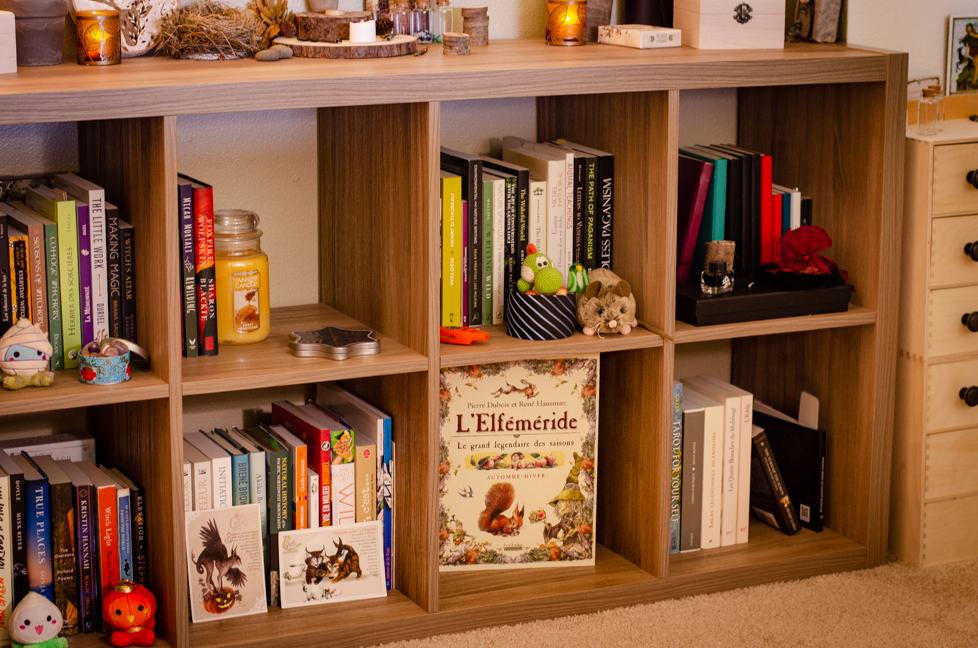 Wildera Atelier - Bookshelf