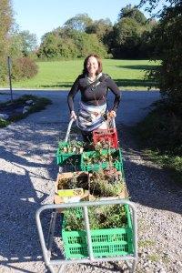 Staudeneinkauf für den Wilden Meter (c) Anja Salewski