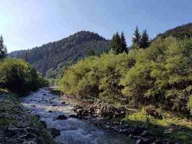 European Wilderness Diary-20315
