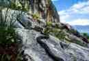 Albania, Prespa NP6.jpg - © European Wilderness Society CC BY-NC-ND 4.0