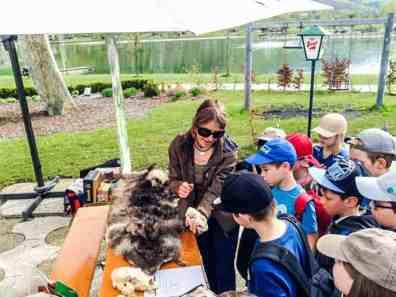 Wolves School Festival Hohe Tauern Uttendorf 1