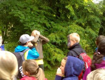 National Park Hohe Tauern school festival with European Wilderness Society participation in Salzburg