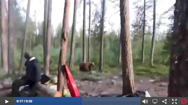 singing-the-bear-away