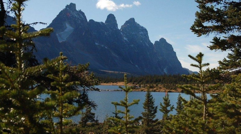 world-s-top-class-wilderness-in-banff-is-in-peril-8.jpg - © European Wilderness Society CC BY-NC-ND 4.0