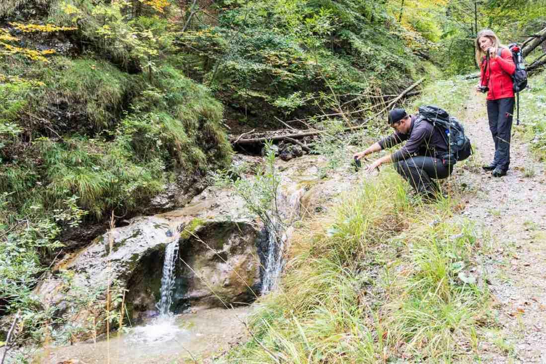 WIlderness Exchange Programme Kalkalpen 45.dng - © European Wilderness Society CC BY-NC-ND 4.0