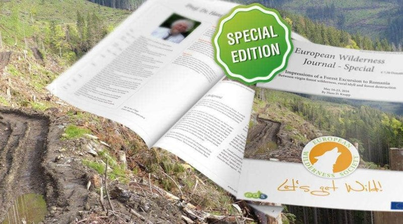special-report-deforestation-in-romania.jpg - © European Wilderness Society CC BY-NC-ND 4.0