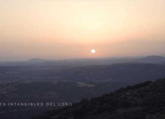 Iberian Wolf documentary: La Emocion Del Lobo