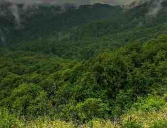 EWS - Uholka Sirokyy Luh Wilderness Exchange Programme -11882_