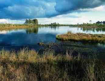Cepkeliai-Dzukija National Park 0006.jpg - © European Wilderness Society CC BY-NC-ND 4.0