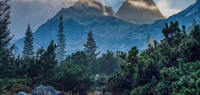 IUCN Wilderness Management Guidelines