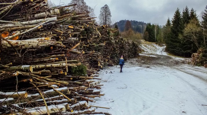 Slovakia, Muranska Planina 0815.JPG - European Wilderness Society - CC NonCommercial-NoDerivates 4.0 International