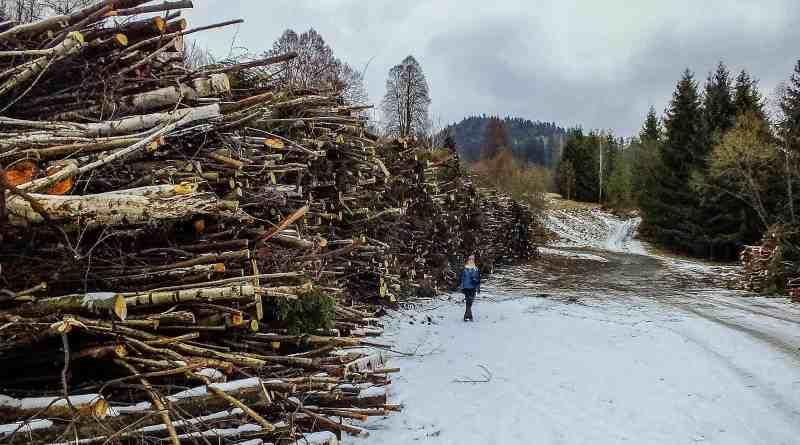Slovakia, Muranska Planina 0815.JPG - © European Wilderness Society CC BY-NC-ND 4.0