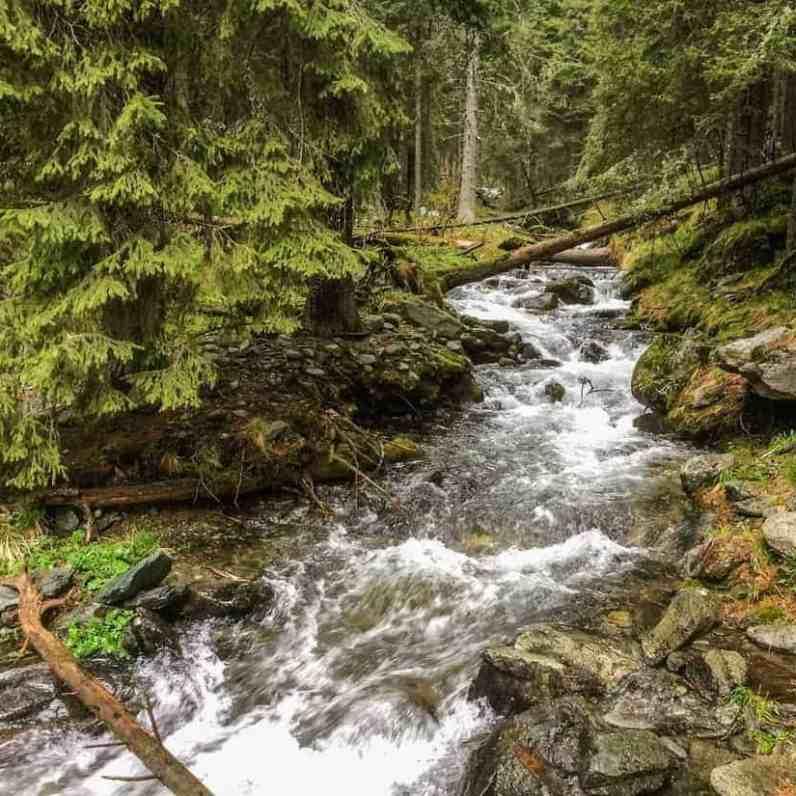 Retezat National Park 0202