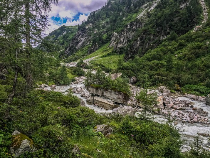 EWS - Hohe Tauern WIlderness Exkursion 2017 -05743_