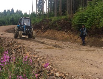Ukraine Sanitary Logging Analysis 0021.jpg - European Wilderness Society - CC NonCommercial-NoDerivates 4.0 International