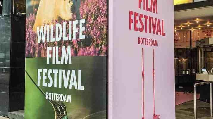 EWS - Wildlife film Festival Rotterdam -07882_