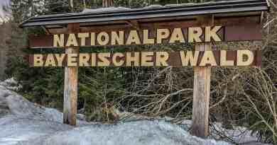 Bavarian National Park Sumava - 1237.jpg - © European Wilderness Society CC BY-NC-ND 4.0