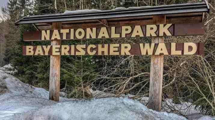 Bavarian National Park Sumava - 1237.jpg - European Wilderness Society - CC NonCommercial-NoDerivates 4.0 International