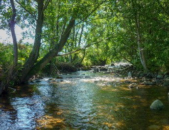 Romania: Management of Protected Areas and Wild Rivers