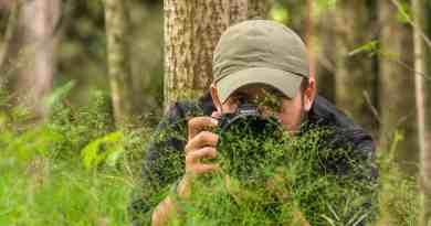 WILDArt Synevyr - 16406.jpg - © European Wilderness Society CC BY-NC-ND 4.0