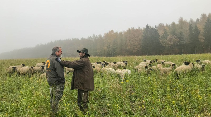 ORF Livestock Protection Knut Kuznik-21867.JPG - © European Wilderness Society CC BY-NC-ND 4.0