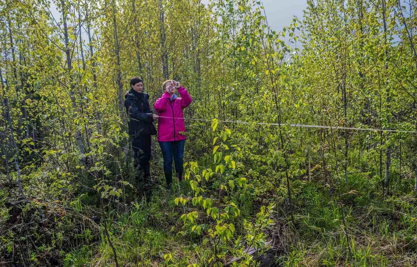 Archangelsk-21885.JPG - © European Wilderness Society CC BY-NC-ND 4.0