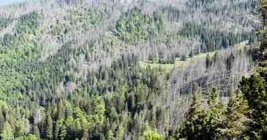 Kalkalpen Wilderness 19-2.jpg - © European Wilderness Society CC BY-NC-ND 4.0