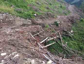 Ukraine Sanitary Logging Analysis - 6487.jpg - European Wilderness Society - CC NonCommercial-NoDerivates 4.0 International