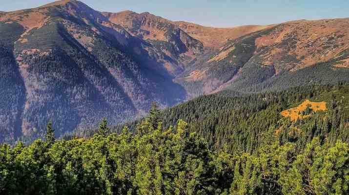 Skalka Wilderness © All rights reserved