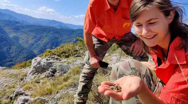 Cervenata stena Reserve-30031.jpg - © European Wilderness Society CC BY-NC-ND 4.0