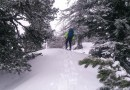 Snowshoeing in the Lungau-31047.jpg - © European Wilderness Society CC BY-NC-ND 4.0