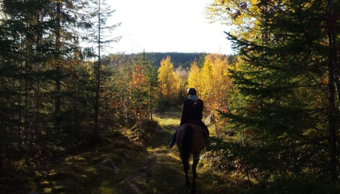 October trail