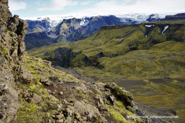 Bone-thin marker sticks, Útigönguhöfði hiking trail, Þórsmörk, Iceland