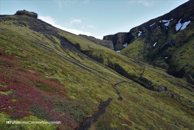 Hvannárgil canyon path, Þórsmörk, Iceland