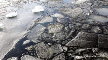 Black and white ice, Urk, The Netherlands